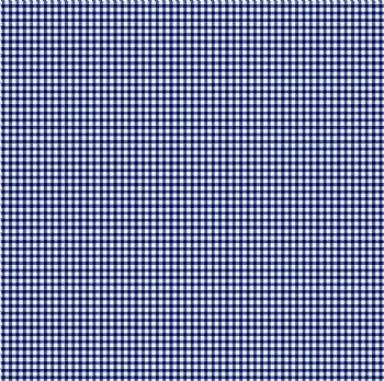 Xadrez Azul Marinho